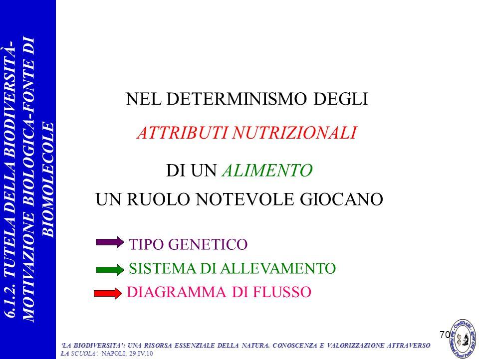 70 NEL DETERMINISMO DEGLI ATTRIBUTI NUTRIZIONALI DI UN ALIMENTO UN RUOLO NOTEVOLE GIOCANO SISTEMA DI ALLEVAMENTO TIPO GENETICO DIAGRAMMA DI FLUSSO 6.1