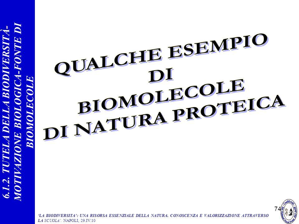 74 6.1.2. TUTELA DELLA BIODIVERSITÀ- MOTIVAZIONE BIOLOGICA-FONTE DI BIOMOLECOLE LA BIODIVERSITA: UNA RISORSA ESSENZIALE DELLA NATURA. CONOSCENZA E VAL