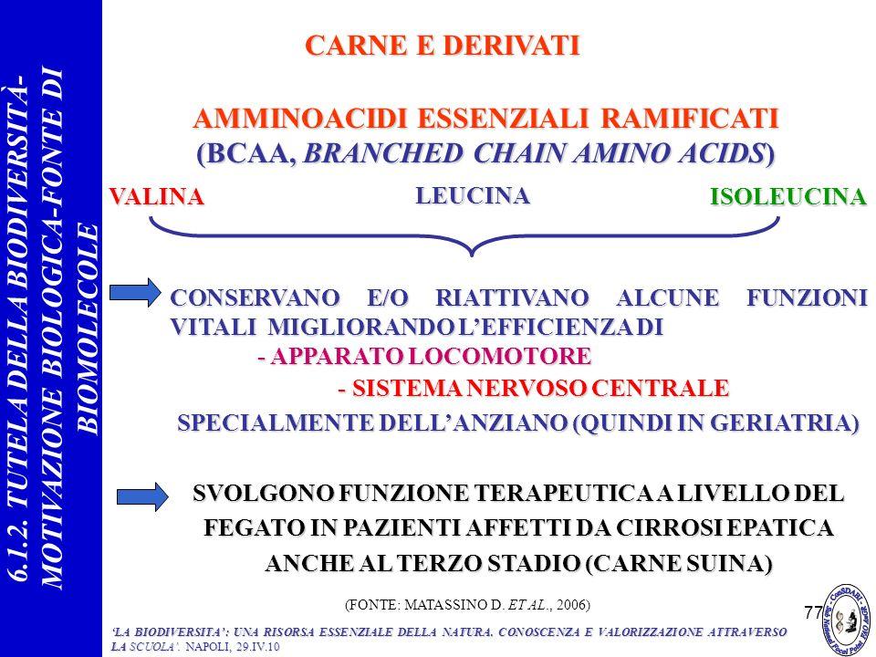 77 AMMINOACIDI ESSENZIALI RAMIFICATI (BCAA, BRANCHED CHAIN AMINO ACIDS) VALINA CONSERVANO E/O RIATTIVANO ALCUNE FUNZIONI VITALI MIGLIORANDO LEFFICIENZ