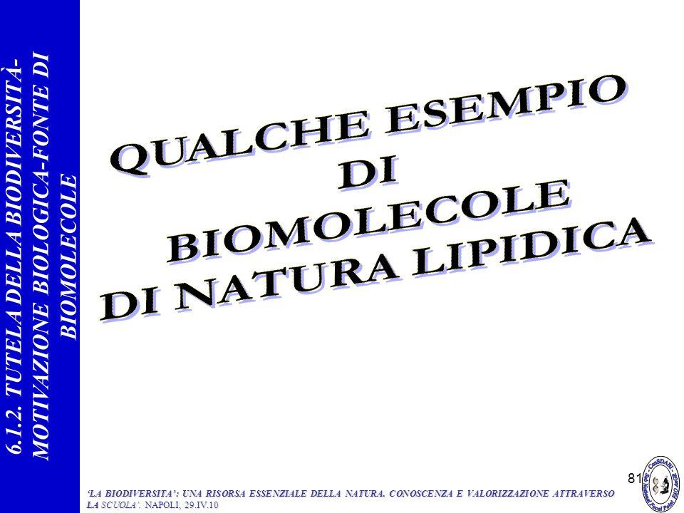 81 6.1.2. TUTELA DELLA BIODIVERSITÀ- MOTIVAZIONE BIOLOGICA-FONTE DI BIOMOLECOLE LA BIODIVERSITA: UNA RISORSA ESSENZIALE DELLA NATURA. CONOSCENZA E VAL