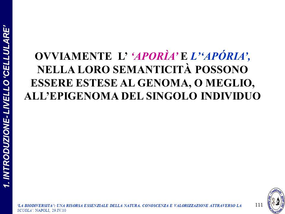 OVVIAMENTE L APORÌA E LAPÓRIA, NELLA LORO SEMANTICITÀ POSSONO ESSERE ESTESE AL GENOMA, O MEGLIO, ALLEPIGENOMA DEL SINGOLO INDIVIDUO 111 1.