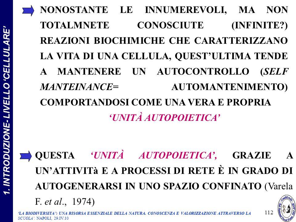 NONOSTANTE LE INNUMEREVOLI, MA NON TOTALMNETE CONOSCIUTE (INFINITE?) REAZIONI BIOCHIMICHE CHE CARATTERIZZANO LA VITA DI UNA CELLULA, QUESTULTIMA TENDE A MANTENERE UN AUTOCONTROLLO (SELF MANTEINANCE= AUTOMANTENIMENTO) COMPORTANDOSI COME UNA VERA E PROPRIA UNITÀ AUTOPOIETICA QUESTA UNITÀ AUTOPOIETICA, GRAZIE A UNATTIVITà E A PROCESSI DI RETE È IN GRADO DI AUTOGENERARSI IN UNO SPAZIO CONFINATO (Varela F.