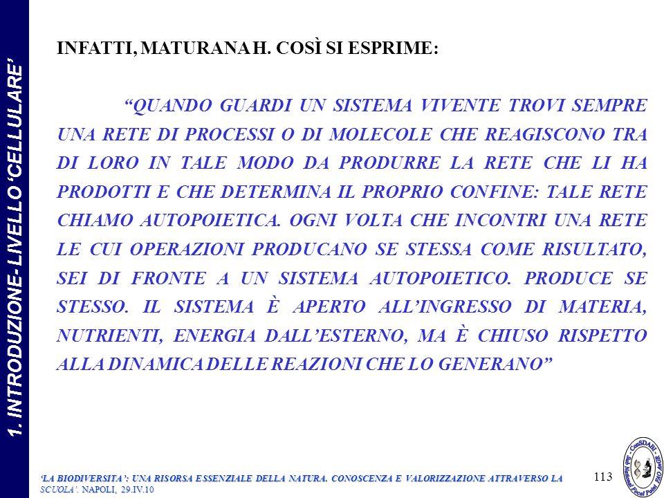 INFATTI, MATURANA H.