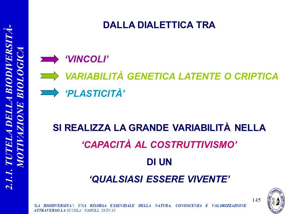 145 DALLA DIALETTICA TRA VINCOLI VARIABILITÀ GENETICA LATENTE O CRIPTICA PLASTICITÀ SI REALIZZA LA GRANDE VARIABILITÀ NELLA CAPACITÀ AL COSTRUTTIVISMO DI UN QUALSIASI ESSERE VIVENTE 2.1.1.