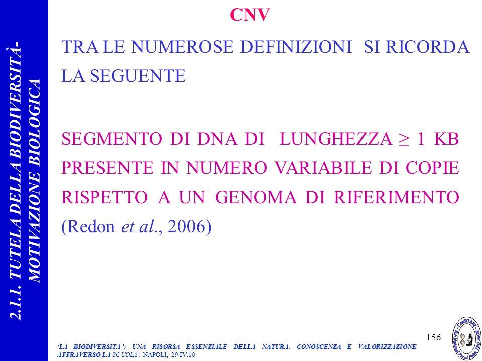 TRA LE NUMEROSE DEFINIZIONI SI RICORDA LA SEGUENTE CNV SEGMENTO DI DNA DI LUNGHEZZA 1 KB PRESENTE IN NUMERO VARIABILE DI COPIE RISPETTO A UN GENOMA DI RIFERIMENTO (Redon et al., 2006) 2.1.1.