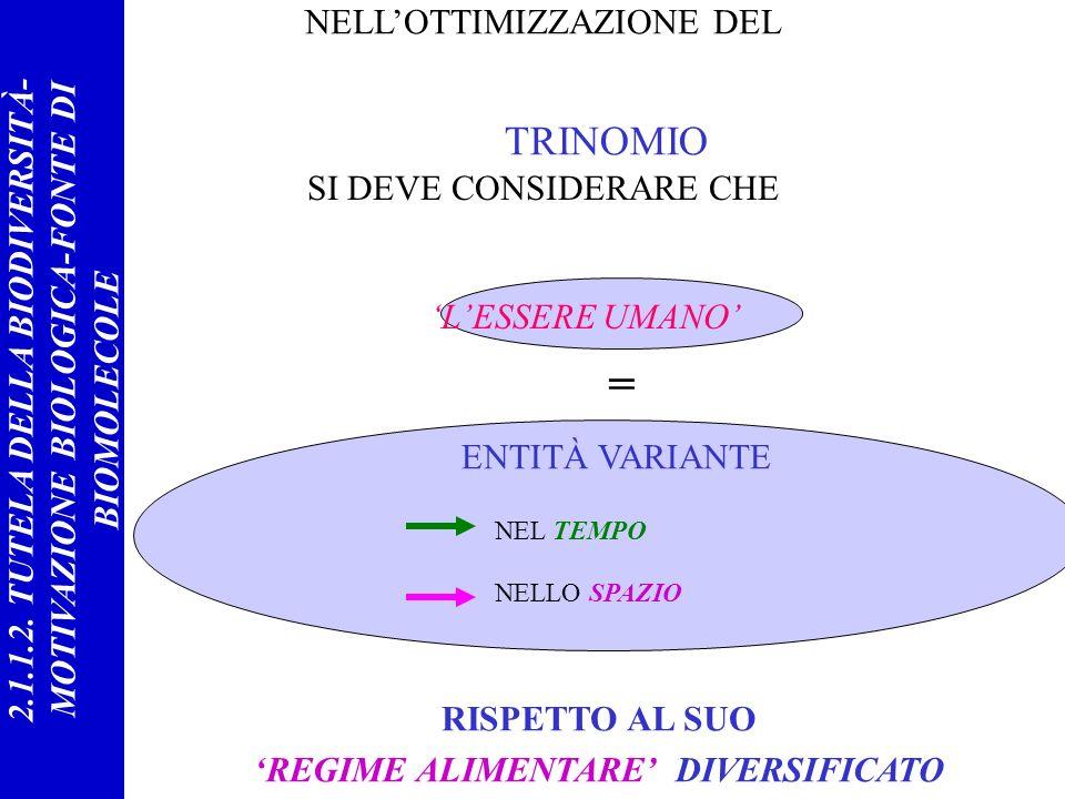 = ENTITÀ VARIANTE NEL TEMPO NELLO SPAZIO RISPETTO AL SUO REGIME ALIMENTARE DIVERSIFICATO TRINOMIO LESSERE UMANO NELLOTTIMIZZAZIONE DEL SI DEVE CONSIDERARE CHE 2.1.1.2.