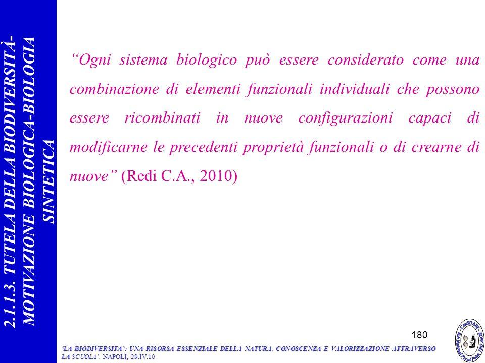 Ogni sistema biologico può essere considerato come una combinazione di elementi funzionali individuali che possono essere ricombinati in nuove configurazioni capaci di modificarne le precedenti proprietà funzionali o di crearne di nuove (Redi C.A., 2010) 180 2.1.1.3.