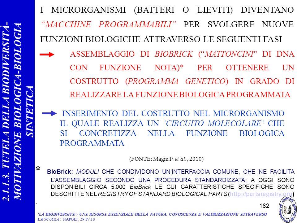 INSERIMENTO DEL COSTRUTTO NEL MICRORGANISMO IL QUALE REALIZZA UN CIRCUITO MOLECOLARE CHE SI CONCRETIZZA NELLA FUNZIONE BIOLOGICA PROGRAMMATA * BioBrick: MODULI CHE CONDIVIDONO UNINTERFACCIA COMUNE, CHE NE FACILITA LASSEMBLAGGIO SECONDO UNA PROCEDURA STANDARDIZZATA; A OGGI SONO DISPONIBILI CIRCA 5.000 BioBrick LE CUI CARATTERISTICHE SPECIFICHE SONO DESCRITTE NEL REGISTRY OF STANDARD BIOLOGICAL PARTS (http://partsregistry.org)http://partsregistry.org.
