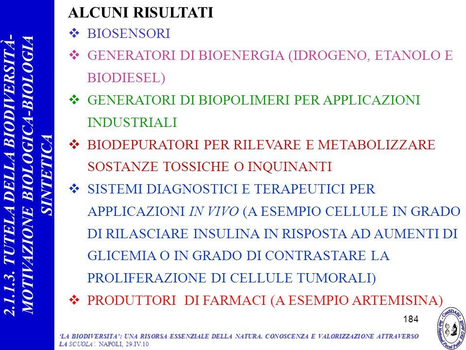 ALCUNI RISULTATI BIOSENSORI GENERATORI DI BIOENERGIA (IDROGENO, ETANOLO E BIODIESEL) GENERATORI DI BIOPOLIMERI PER APPLICAZIONI INDUSTRIALI BIODEPURATORI PER RILEVARE E METABOLIZZARE SOSTANZE TOSSICHE O INQUINANTI SISTEMI DIAGNOSTICI E TERAPEUTICI PER APPLICAZIONI IN VIVO (A ESEMPIO CELLULE IN GRADO DI RILASCIARE INSULINA IN RISPOSTA AD AUMENTI DI GLICEMIA O IN GRADO DI CONTRASTARE LA PROLIFERAZIONE DI CELLULE TUMORALI) PRODUTTORI DI FARMACI (A ESEMPIO ARTEMISINA) 184 2.1.1.3.