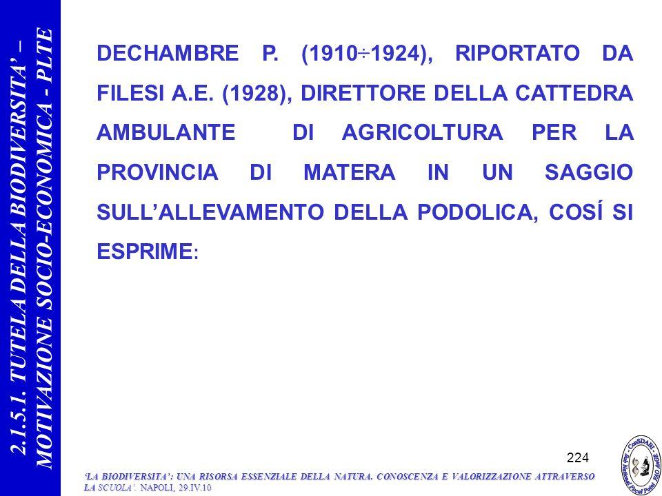DECHAMBRE P.(1910÷1924), RIPORTATO DA FILESI A.E.