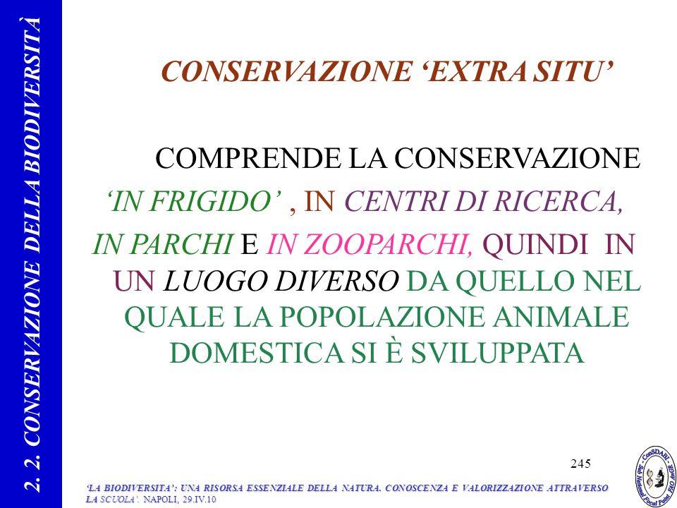CONSERVAZIONE EXTRA SITU COMPRENDE LA CONSERVAZIONE IN FRIGIDO, IN CENTRI DI RICERCA, IN PARCHI E IN ZOOPARCHI, QUINDI IN UN LUOGO DIVERSO DA QUELLO NEL QUALE LA POPOLAZIONE ANIMALE DOMESTICA SI È SVILUPPATA 2.