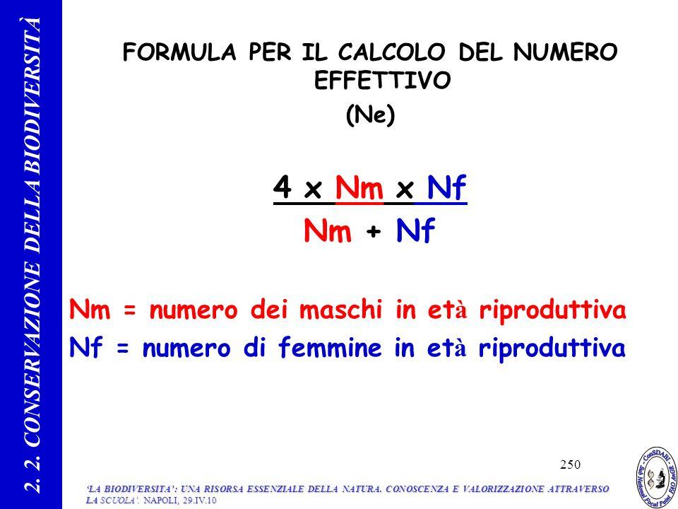 FORMULA PER IL CALCOLO DEL NUMERO EFFETTIVO (Ne) 4 x Nm x Nf Nm + Nf Nm = numero dei maschi in et à riproduttiva Nf = numero di femmine in et à riproduttiva 2.