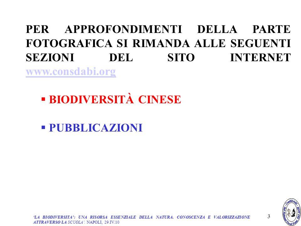 I PARTE -BIODIVERSITÀ: ASPETTI GENERALI INDICE 1.INTRODUZIONE 2.