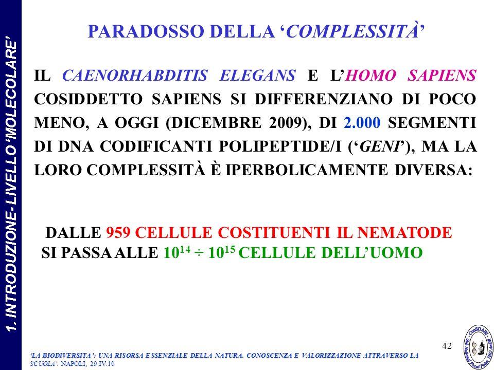 IL CAENORHABDITIS ELEGANS E LHOMO SAPIENS COSIDDETTO SAPIENS SI DIFFERENZIANO DI POCO MENO, A OGGI (DICEMBRE 2009), DI 2.000 SEGMENTI DI DNA CODIFICANTI POLIPEPTIDE/I (GENI), MA LA LORO COMPLESSITÀ È IPERBOLICAMENTE DIVERSA: 1.