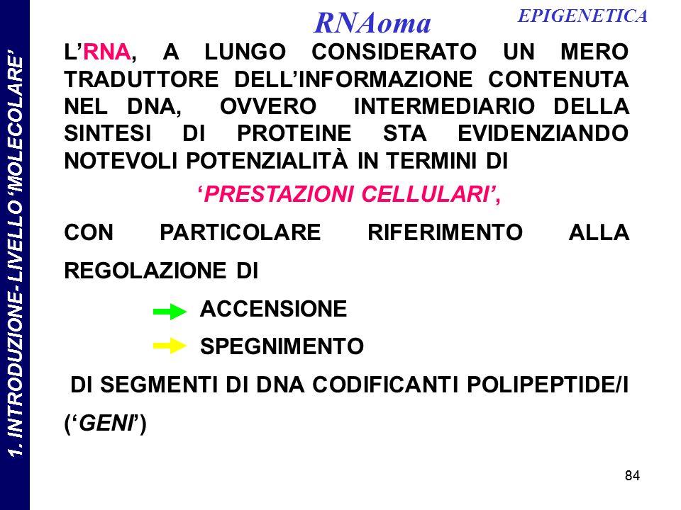 84 LRNA, A LUNGO CONSIDERATO UN MERO TRADUTTORE DELLINFORMAZIONE CONTENUTA NEL DNA, OVVERO INTERMEDIARIO DELLA SINTESI DI PROTEINE STA EVIDENZIANDO NOTEVOLI POTENZIALITÀ IN TERMINI DI PRESTAZIONI CELLULARI, CON PARTICOLARE RIFERIMENTO ALLA REGOLAZIONE DI ACCENSIONE SPEGNIMENTO DI SEGMENTI DI DNA CODIFICANTI POLIPEPTIDE/I (GENI) EPIGENETICA RNAoma 1.