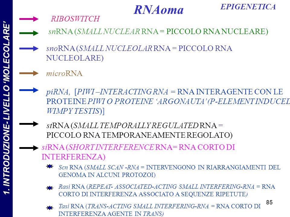 RIBOSWITCH snoRNA (SMALL NUCLEOLAR RNA = PICCOLO RNA NUCLEOLARE) snRNA (SMALL NUCLEAR RNA = PICCOLO RNA NUCLEARE) microRNA RNAoma stRNA (SMALL TEMPORALLY REGULATED RNA = PICCOLO RNA TEMPORANEAMENTE REGOLATO) siRNA (SHORT INTERFERENCE RNA= RNA CORTO DI INTERFERENZA) Tasi RNA (TRANS-ACTING SMALL INTERFERING-RNA = RNA CORTO DI INTERFERENZA AGENTE IN TRANS) Rasi RNA (REPEAT- ASSOCIATED-ACTING SMALL INTERFERING-RNA = RNA CORTO DI INTERFERENZA ASSOCIATO A SEQUENZE RIPETUTE) Scn RNA (SMALL SCAN -RNA = INTERVENGONO IN RIARRANGIAMENTI DEL GENOMA IN ALCUNI PROTOZOI) piRNA, [PIWI –INTERACTING RNA = RNA INTERAGENTE CON LE PROTEINE PIWI O PROTEINE ARGONAUTA (P-ELEMENT INDUCED WIMPY TESTIS)] 85 EPIGENETICA 1.