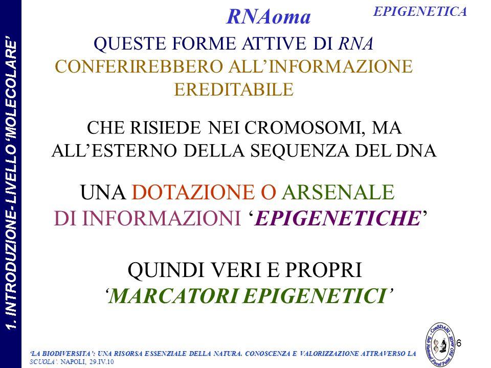 UNA DOTAZIONE O ARSENALE DI INFORMAZIONI EPIGENETICHE QUESTE FORME ATTIVE DI RNA CONFERIREBBERO ALLINFORMAZIONE EREDITABILE CHE RISIEDE NEI CROMOSOMI, MA ALLESTERNO DELLA SEQUENZA DEL DNA QUINDI VERI E PROPRI MARCATORI EPIGENETICI 86 EPIGENETICA RNAoma LA BIODIVERSITA: UNA RISORSA ESSENZIALE DELLA NATURA.