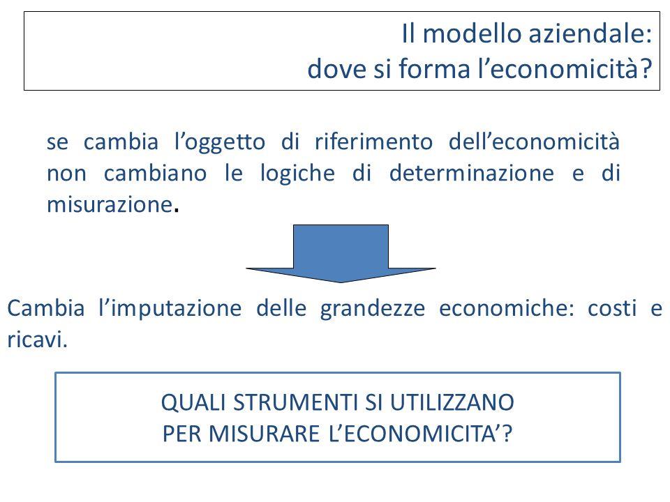 se cambia loggetto di riferimento delleconomicità non cambiano le logiche di determinazione e di misurazione. Cambia limputazione delle grandezze econ