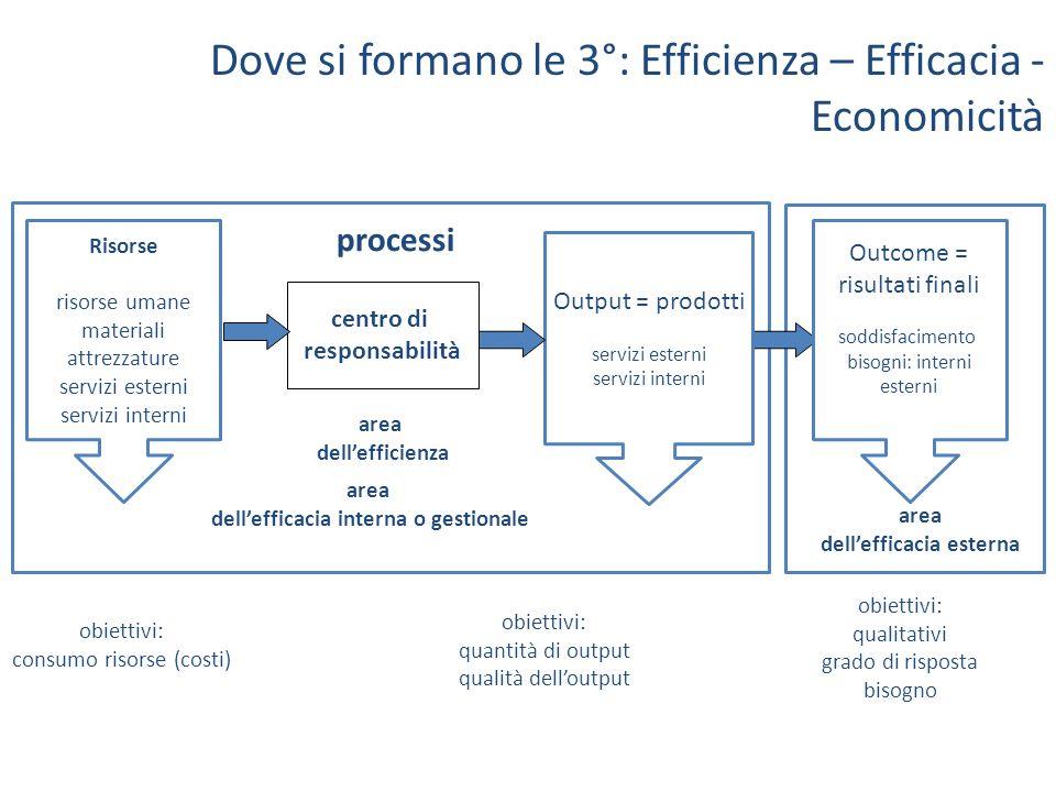centro di responsabilità area dellefficienza obiettivi: quantità di output qualità delloutput obiettivi: consumo risorse (costi) Risorse risorse umane