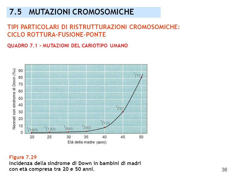 38 7.5 MUTAZIONI CROMOSOMICHE Figura 7.29 Incidenza della sindrome di Down in bambini di madri con età compresa tra 20 e 50 anni. TIPI PARTICOLARI DI