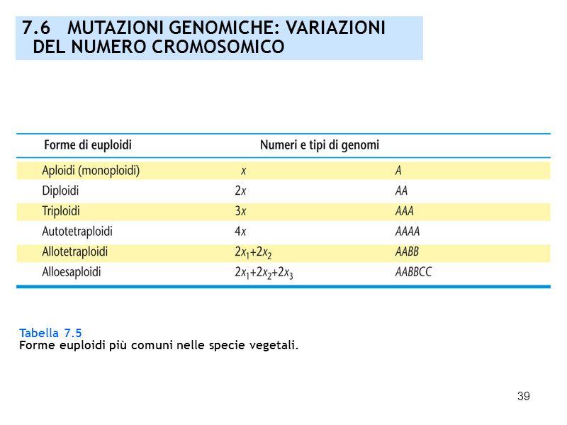 39 7.6 MUTAZIONI GENOMICHE: VARIAZIONI DEL NUMERO CROMOSOMICO Tabella 7.5 Forme euploidi più comuni nelle specie vegetali.