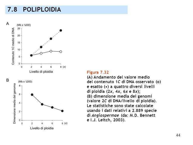 44 7.8 POLIPLOIDIA Figura 7.32 (A) Andamento del valore medio del contenuto 1C di DNA osservato (o) e esatto () a quattro diversi livelli di ploidia (