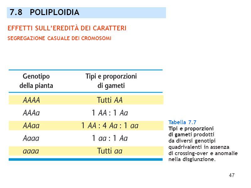 47 Tabella 7.7 Tipi e proporzioni di gameti prodotti da diversi genotipi quadrivalenti in assenza di crossing-over e anomalie nella disgiunzione. 7.8
