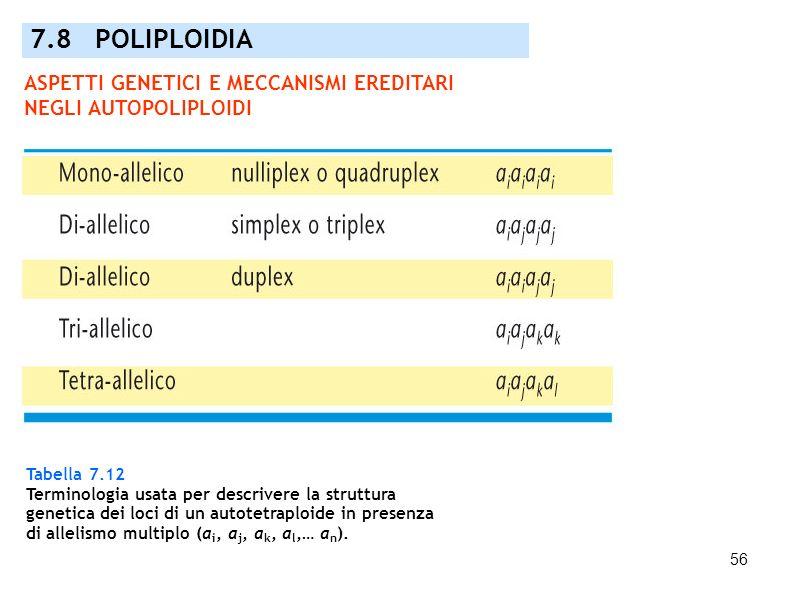 56 Tabella 7.12 Terminologia usata per descrivere la struttura genetica dei loci di un autotetraploide in presenza di allelismo multiplo (a i, a j, a