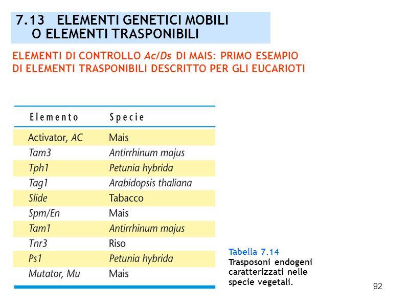 92 Tabella 7.14 Trasposoni endogeni caratterizzati nelle specie vegetali. 7.13 ELEMENTI GENETICI MOBILI O ELEMENTI TRASPONIBILI ELEMENTI DI CONTROLLO