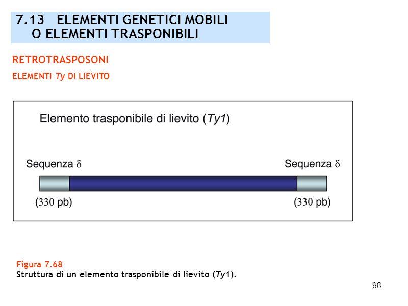 98 Figura 7.68 Struttura di un elemento trasponibile di lievito (Ty1). 7.13 ELEMENTI GENETICI MOBILI O ELEMENTI TRASPONIBILI RETROTRASPOSONI ELEMENTI