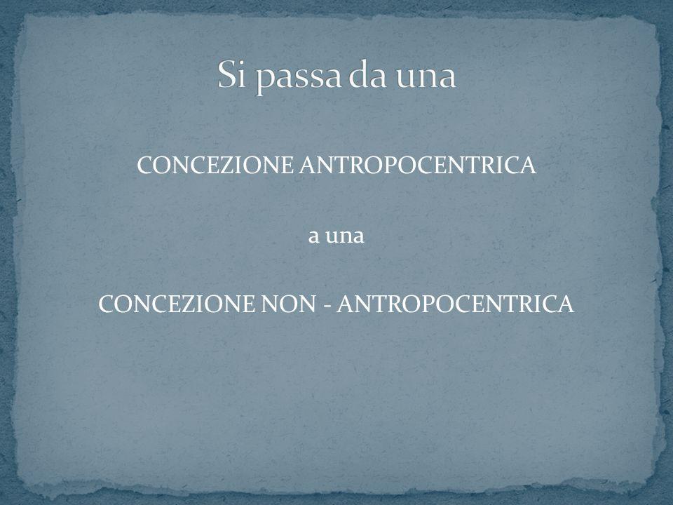CONCEZIONE ANTROPOCENTRICA a una CONCEZIONE NON - ANTROPOCENTRICA