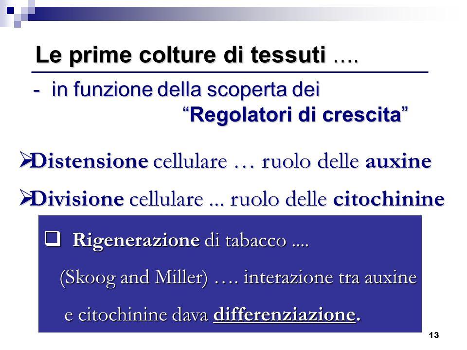 13 Distensione cellulare … ruolo delle auxine Distensione cellulare … ruolo delle auxine Divisione cellulare... ruolo delle citochinine Divisione cell