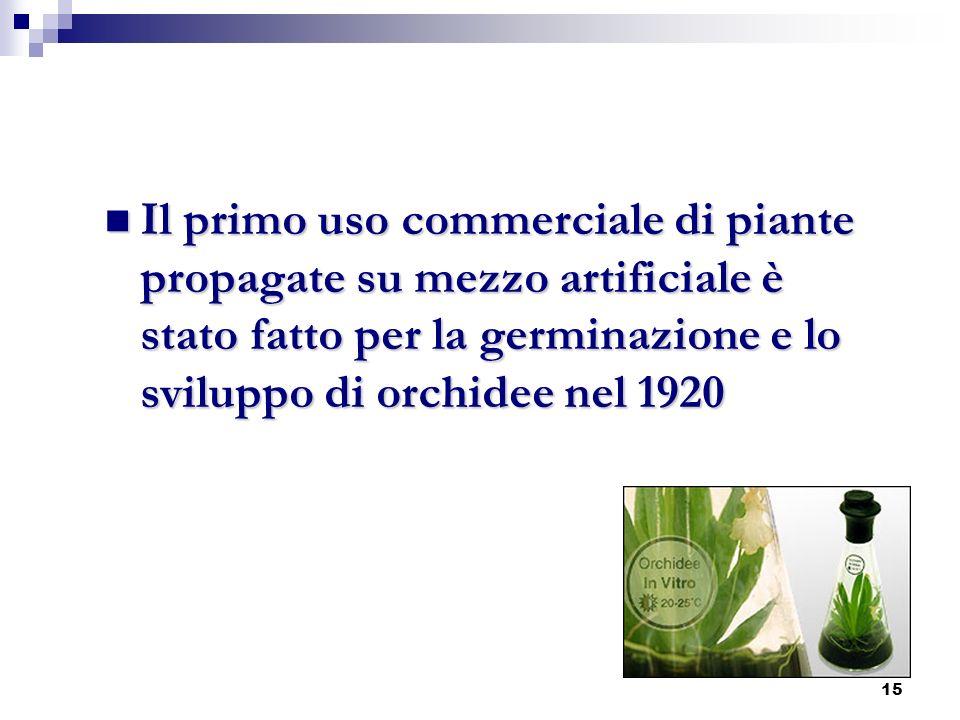 15 Il primo uso commerciale di piante propagate su mezzo artificiale è stato fatto per la germinazione e lo sviluppo di orchidee nel 1920 Il primo uso