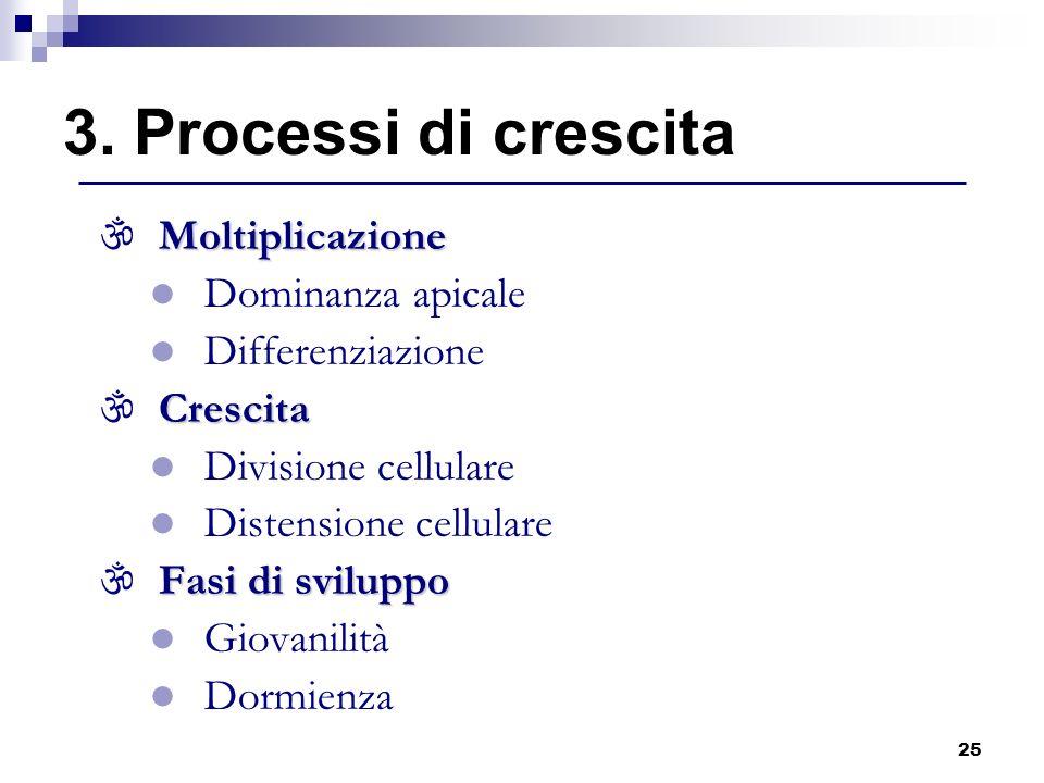 25 Moltiplicazione \ Moltiplicazione l Dominanza apicale l Differenziazione Crescita \ Crescita l Divisione cellulare l Distensione cellulare Fasi di