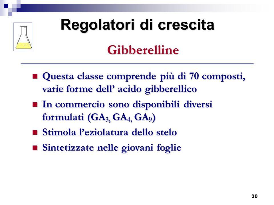 30 Questa classe comprende più di 70 composti, varie forme dell acido gibberellico Questa classe comprende più di 70 composti, varie forme dell acido