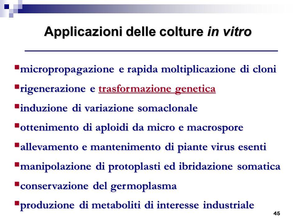 45 micropropagazione e rapida moltiplicazione di cloni micropropagazione e rapida moltiplicazione di cloni rigenerazione e trasformazione genetica rig
