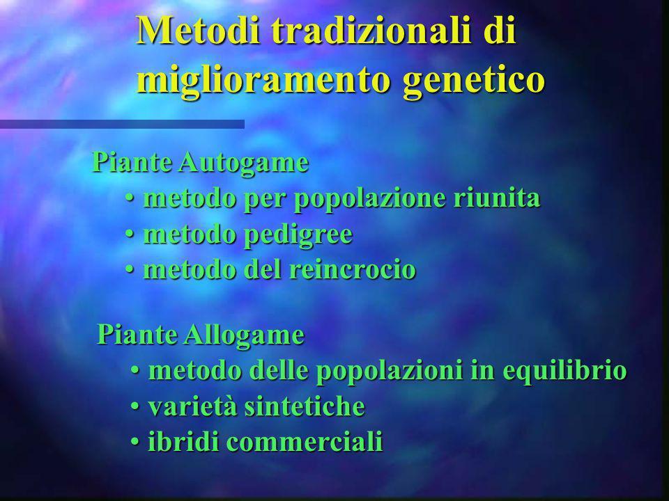 Metodi tradizionali di miglioramento genetico Piante Autogame metodo per popolazione riunita metodo per popolazione riunita metodo pedigree metodo ped