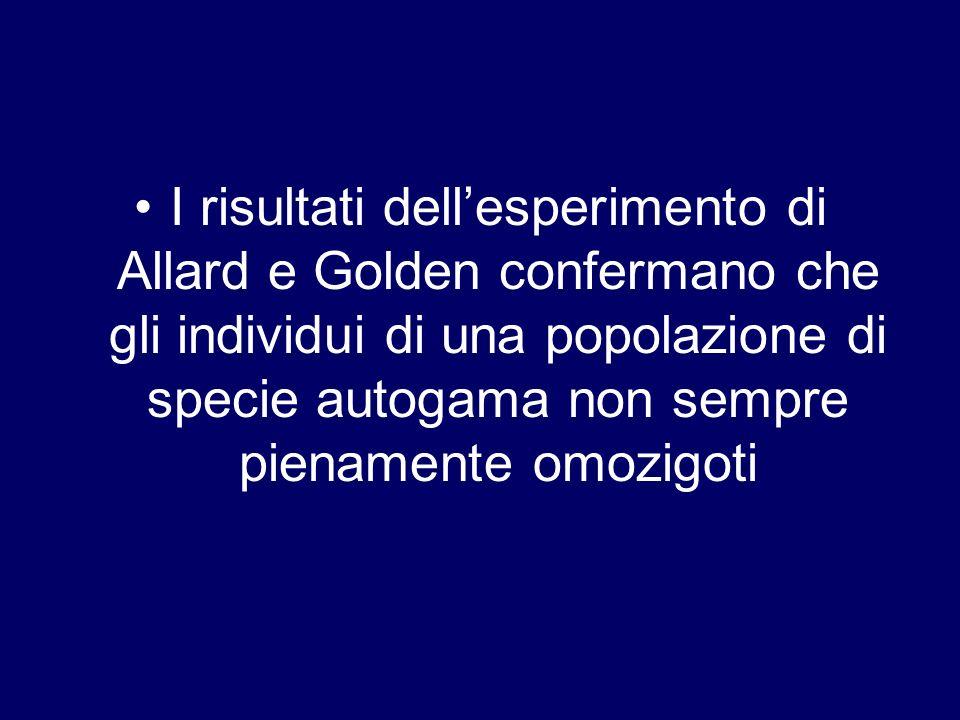 I risultati dellesperimento di Allard e Golden confermano che gli individui di una popolazione di specie autogama non sempre pienamente omozigoti