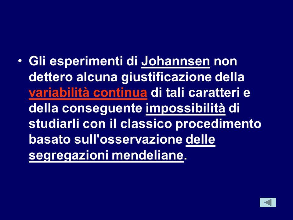 Gli esperimenti di Johannsen non dettero alcuna giustificazione della variabilità continua di tali caratteri e della conseguente impossibilità di stud