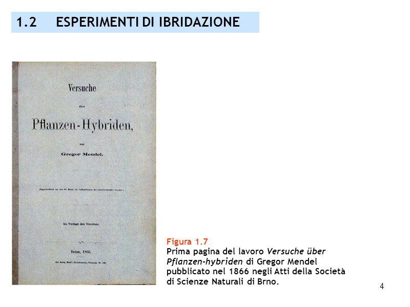 4 Figura 1.7 Prima pagina del lavoro Versuche über Pflanzen-hybriden di Gregor Mendel pubblicato nel 1866 negli Atti della Società di Scienze Naturali