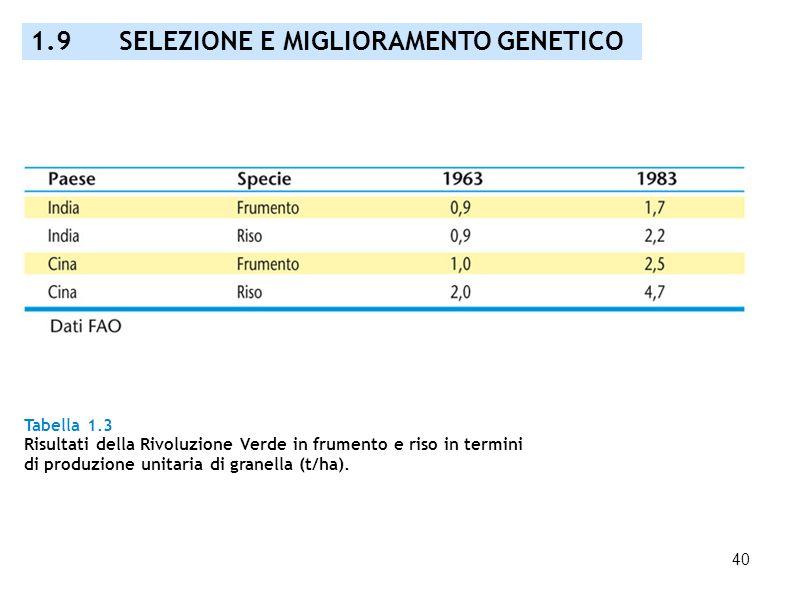 40 Tabella 1.3 Risultati della Rivoluzione Verde in frumento e riso in termini di produzione unitaria di granella (t/ha). 1.9 SELEZIONE E MIGLIORAMENT