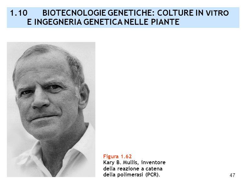 47 Figura 1.62 Kary B. Mullis, inventore della reazione a catena della polimerasi (PCR). 1.10 BIOTECNOLOGIE GENETICHE: COLTURE IN VITRO E INGEGNERIA G