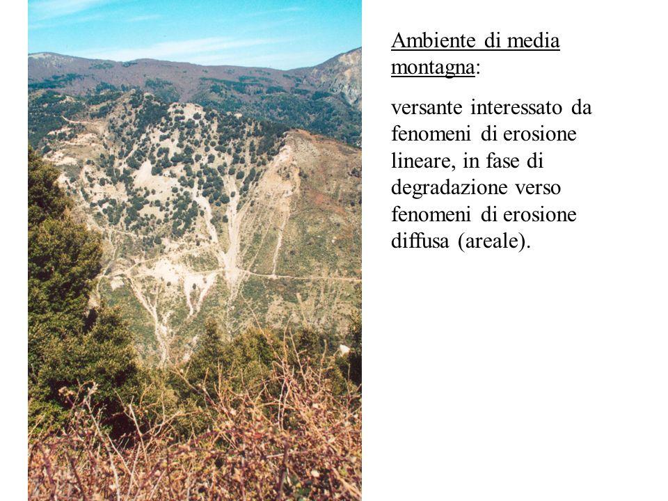 Ambiente di media montagna: versante interessato da fenomeni di erosione lineare, in fase di degradazione verso fenomeni di erosione diffusa (areale).