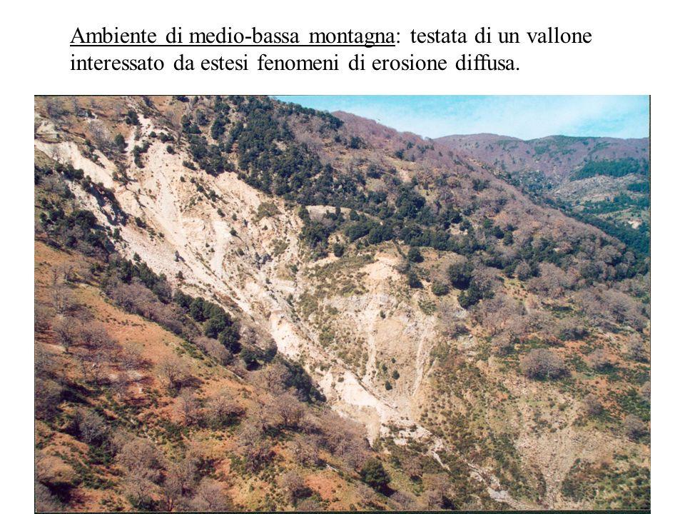 Ambiente di medio-bassa montagna: testata di un vallone interessato da estesi fenomeni di erosione diffusa.
