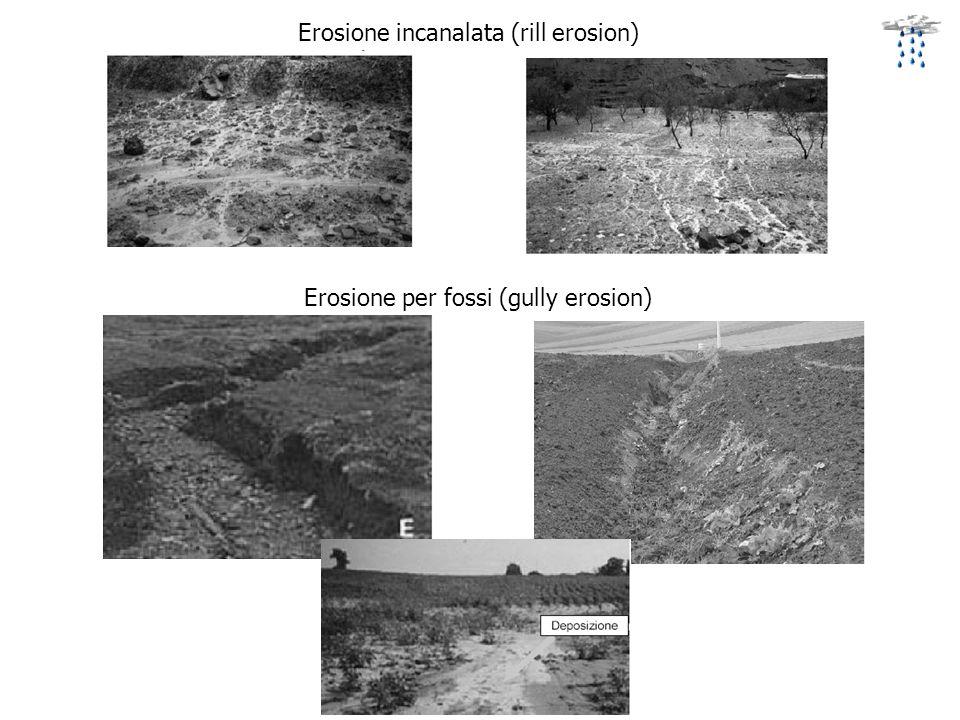 Erosione incanalata (rill erosion) Erosione per fossi (gully erosion)