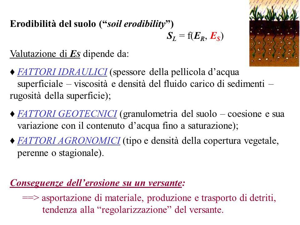 Erodibilità del suolo (soil erodibility) S L = f(E R, E S ) Valutazione di E S dipende da: FATTORI IDRAULICI (spessore della pellicola dacqua superfic