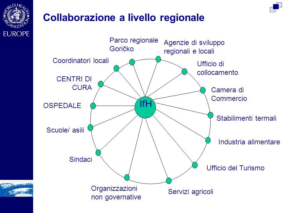 IfHIfH CENTRI DI CURA OSPEDALE Scuole/ asili Sindaci Ufficio di collocamento Agenzie di sviluppo regionali e locali Camera di Commercio Organizzazioni