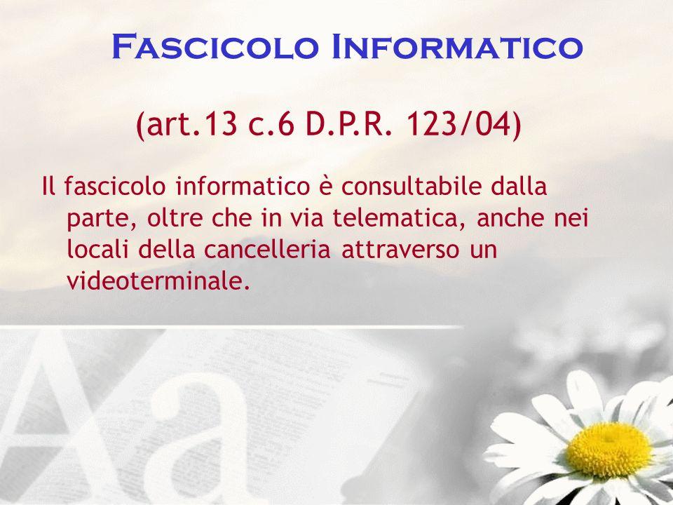 Fascicolo Informatico (art.13 c.6 D.P.R. 123/04) Il fascicolo informatico è consultabile dalla parte, oltre che in via telematica, anche nei locali de