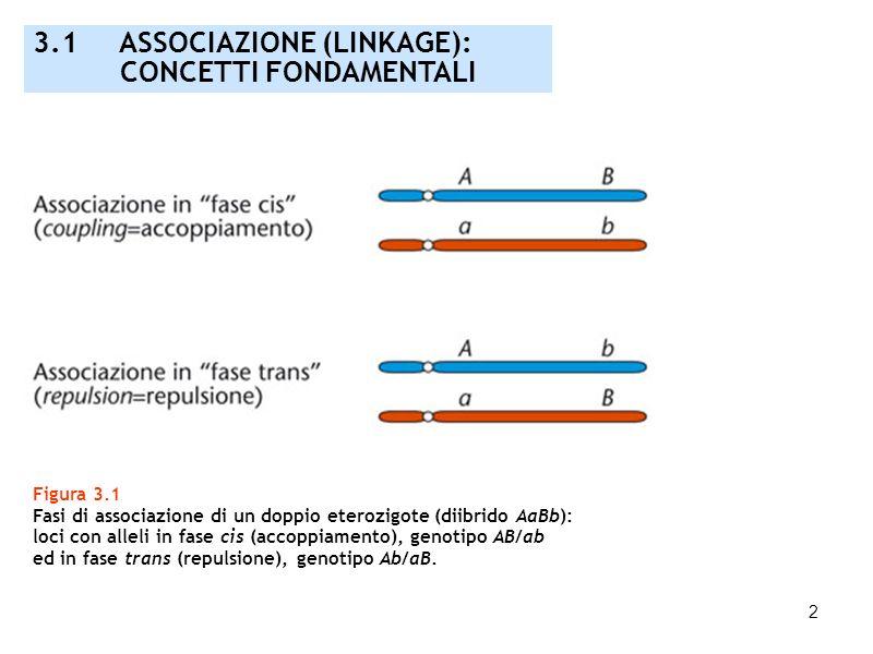 2 3.1 ASSOCIAZIONE (LINKAGE): CONCETTI FONDAMENTALI Figura 3.1 Fasi di associazione di un doppio eterozigote (diibrido AaBb): loci con alleli in fase