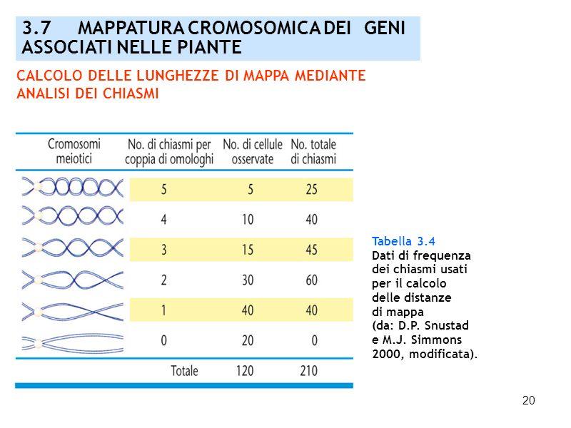 20 3.7 MAPPATURA CROMOSOMICA DEI GENI ASSOCIATI NELLE PIANTE Tabella 3.4 Dati di frequenza dei chiasmi usati per il calcolo delle distanze di mappa (d